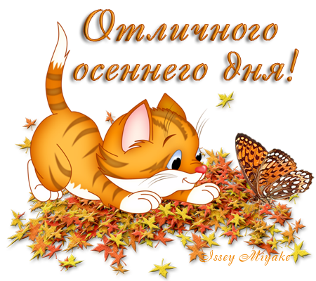 http://filinaelena.ucoz.net/_pu/0/63358980.png
